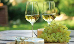 white-wine-in-the-sun