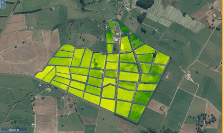 LIC's pasture management system SPACE utilises satellite technology to estimate a farm's pasture cover and improve farm management