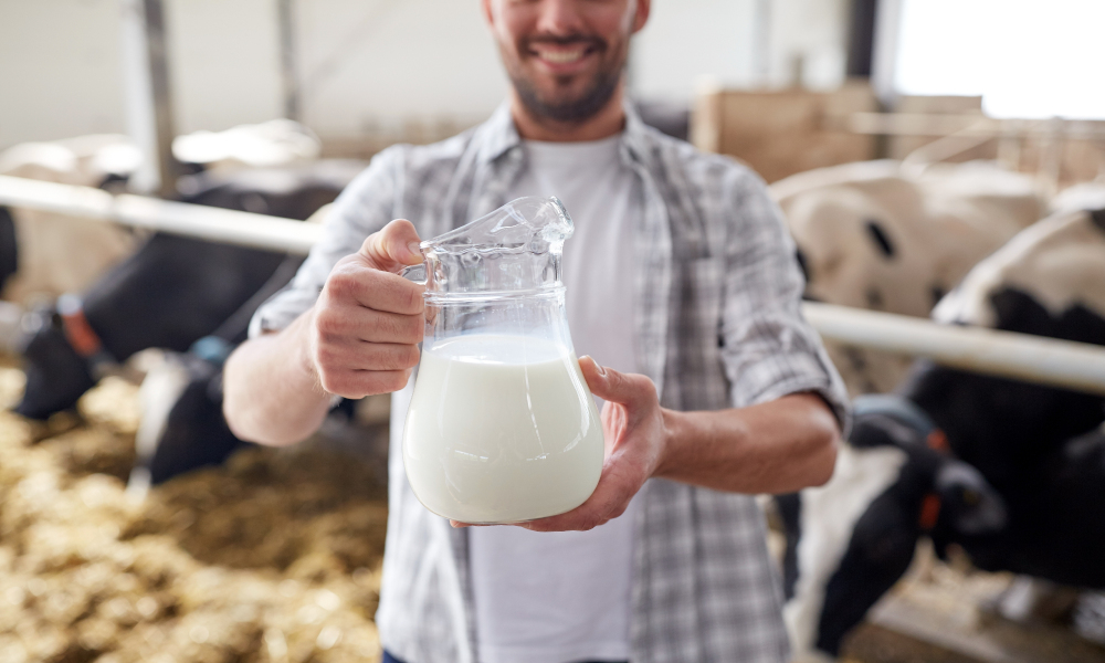milk man agriculture stock image
