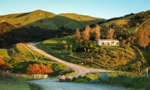 new zealand rural land stock image
