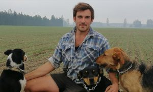 Cust farmer Roscoe Taggart checks his newly planted wheat crop with his dogs Pip, Sass and Rose.