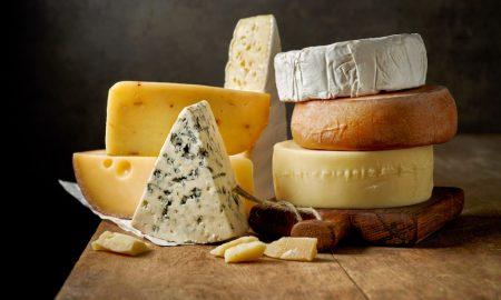 cheese variety stock image
