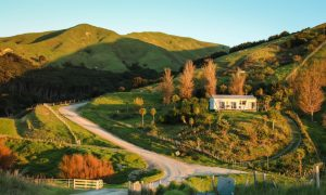 new zealand rural housing stock image
