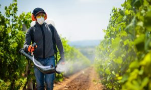 pesticide spray agriculture worker stock image