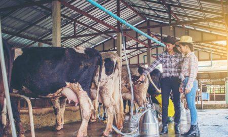 dairy education training stock image