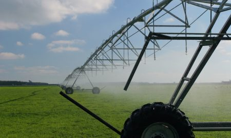 irrigation-system-dairy-farm-NZ