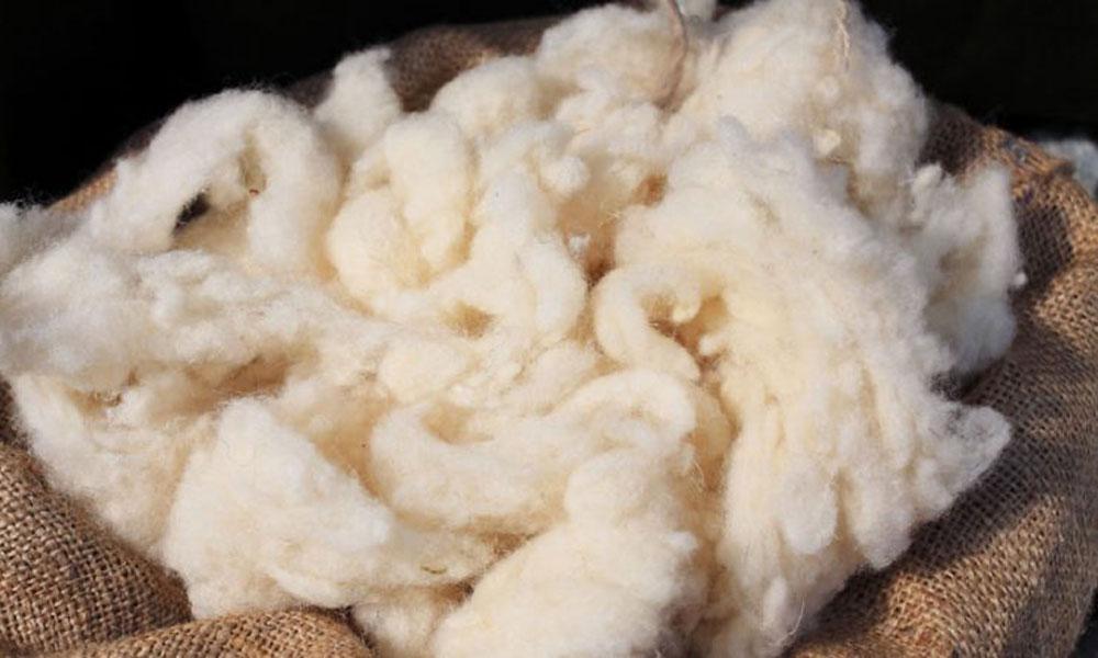 wool generic stock image