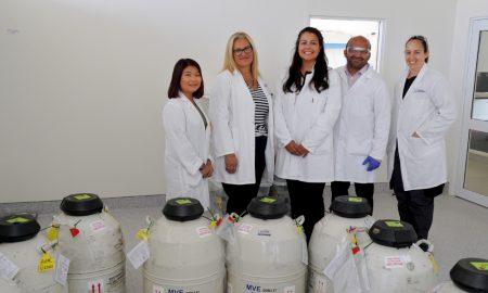The lab team based at LIC's semen processing centre in Awahuri, Manawatu