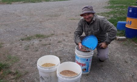 Sheffield farmer Damon Summerfield with some of the crops he grows using irrigation – wheat, barley and chrysanthemum seed.