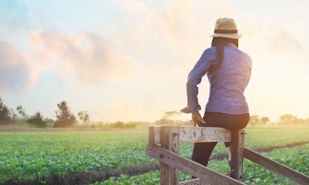 farm woman stock image