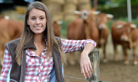 farmer cattle stock image