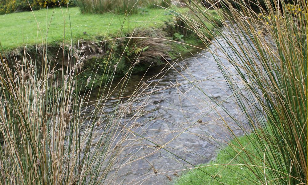 LAWA river water quality data