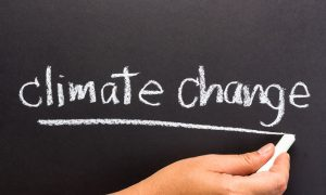 climate change crisis