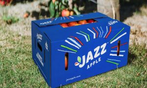 JAZZ™ apple